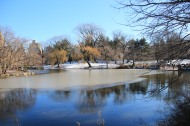 One of the lakes in Central Park